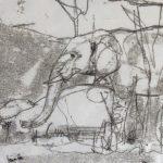 Elephant Funeral